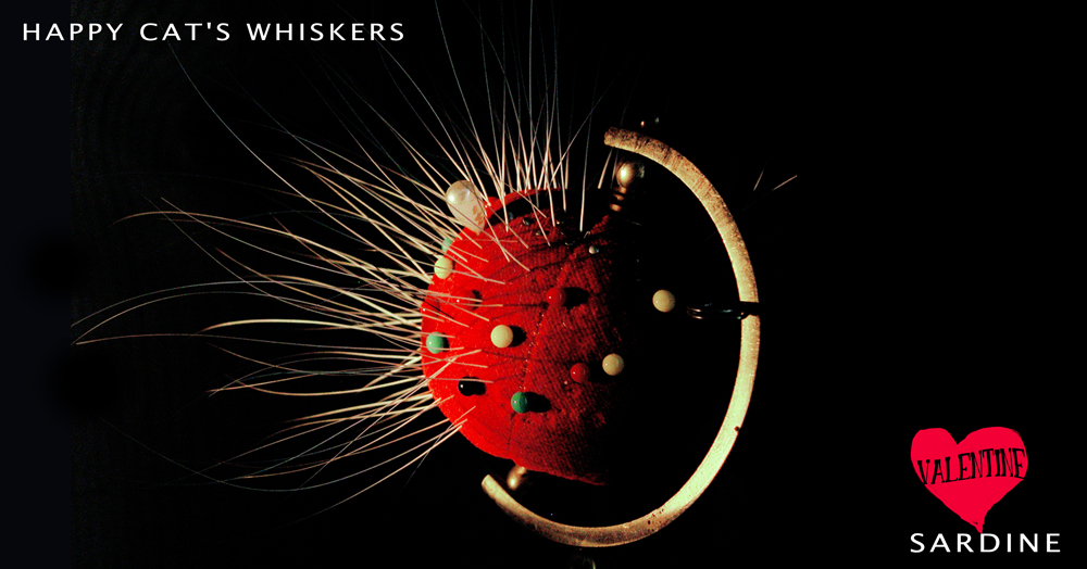 # 07 lucky cat's whiskers